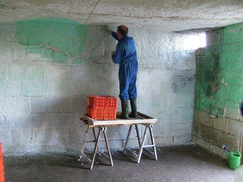 Chaulage des caves champignons de laurence laboutiere les fermes amap - Rever d une vieille maison ...