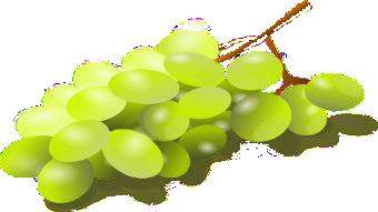 raisin1
